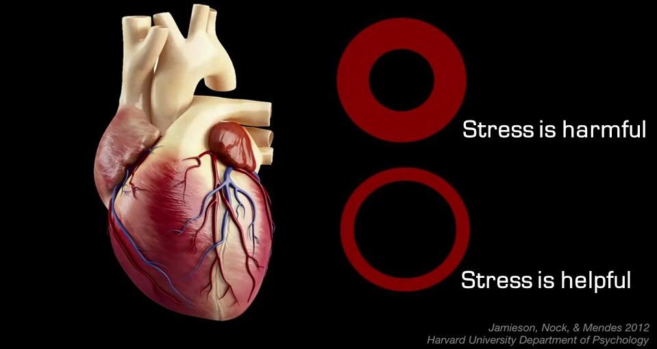 Pemikiran kita mempengaruhi bagaimana tubuh kita bereaksi terhadap stres
